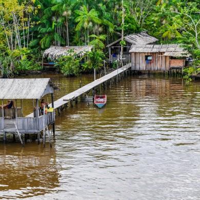 habitations sur pilotis Amazonie