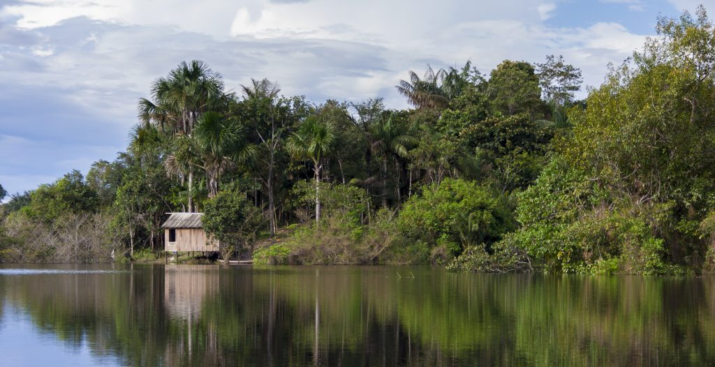 Amazonie Cabane de caboclos