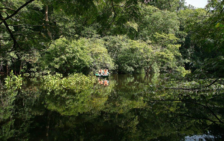 canoe dans les Igarapes