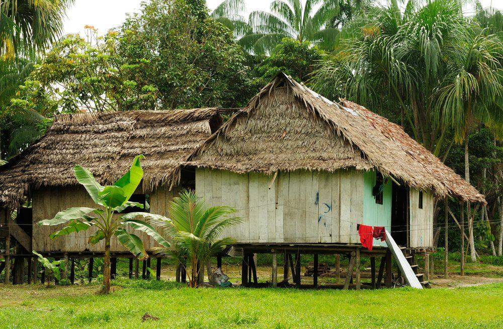 Amazonie communautés indiennes