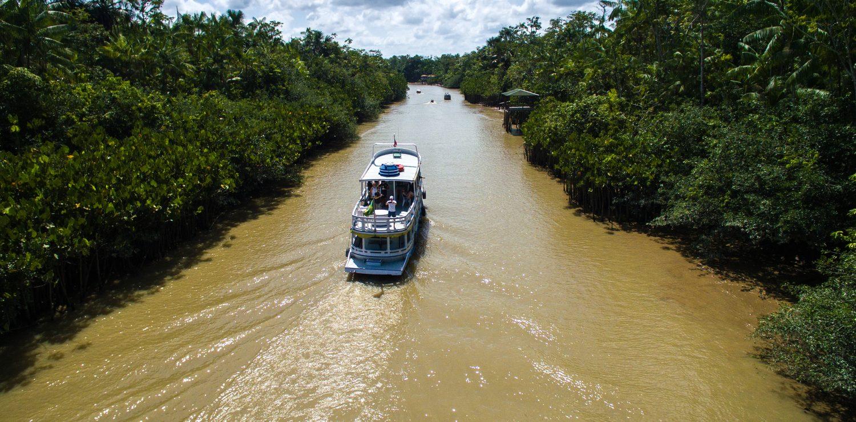 Amazonie croisière Bateau passant dans Igarape