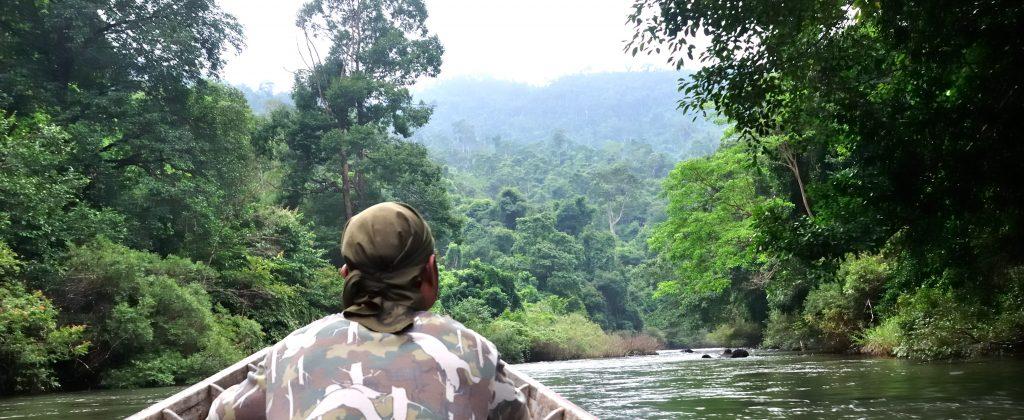 Amazonie_en remontant la rivière