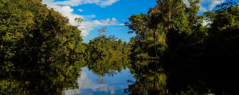 Amazonie Igarape mirroir