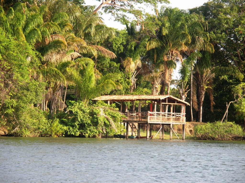Amazonie île de Marajo