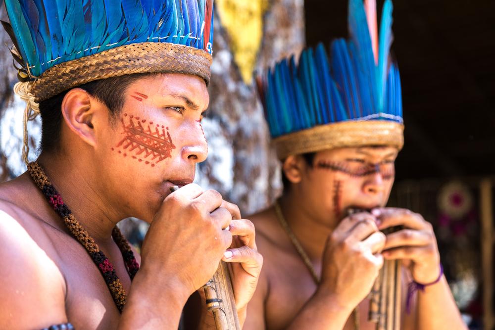 12-Amazonie
