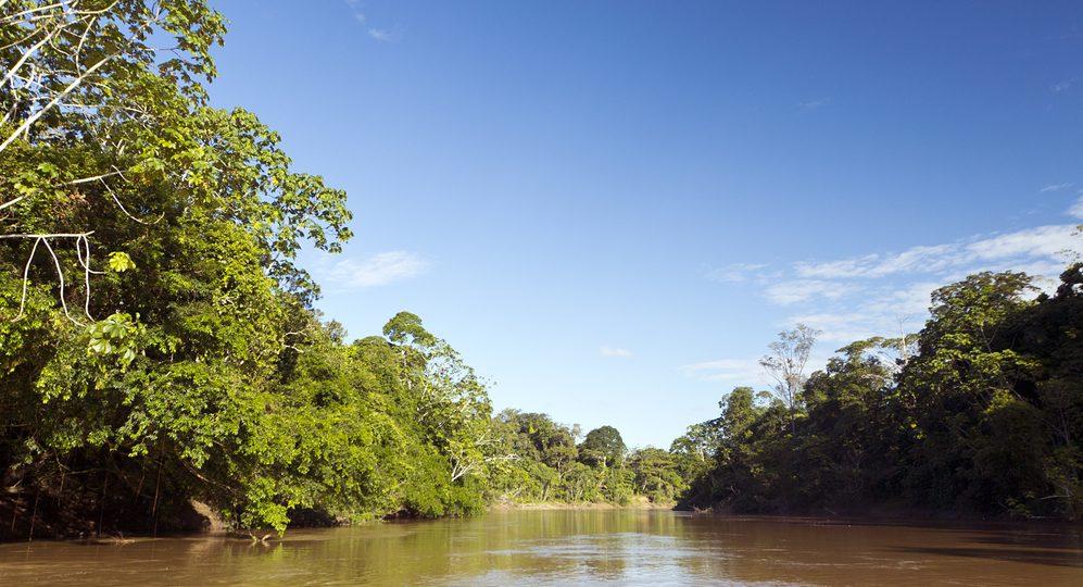 Amazonie rivière d'eau marron