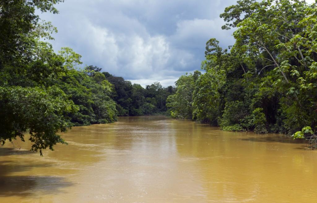 Amazonie rivière