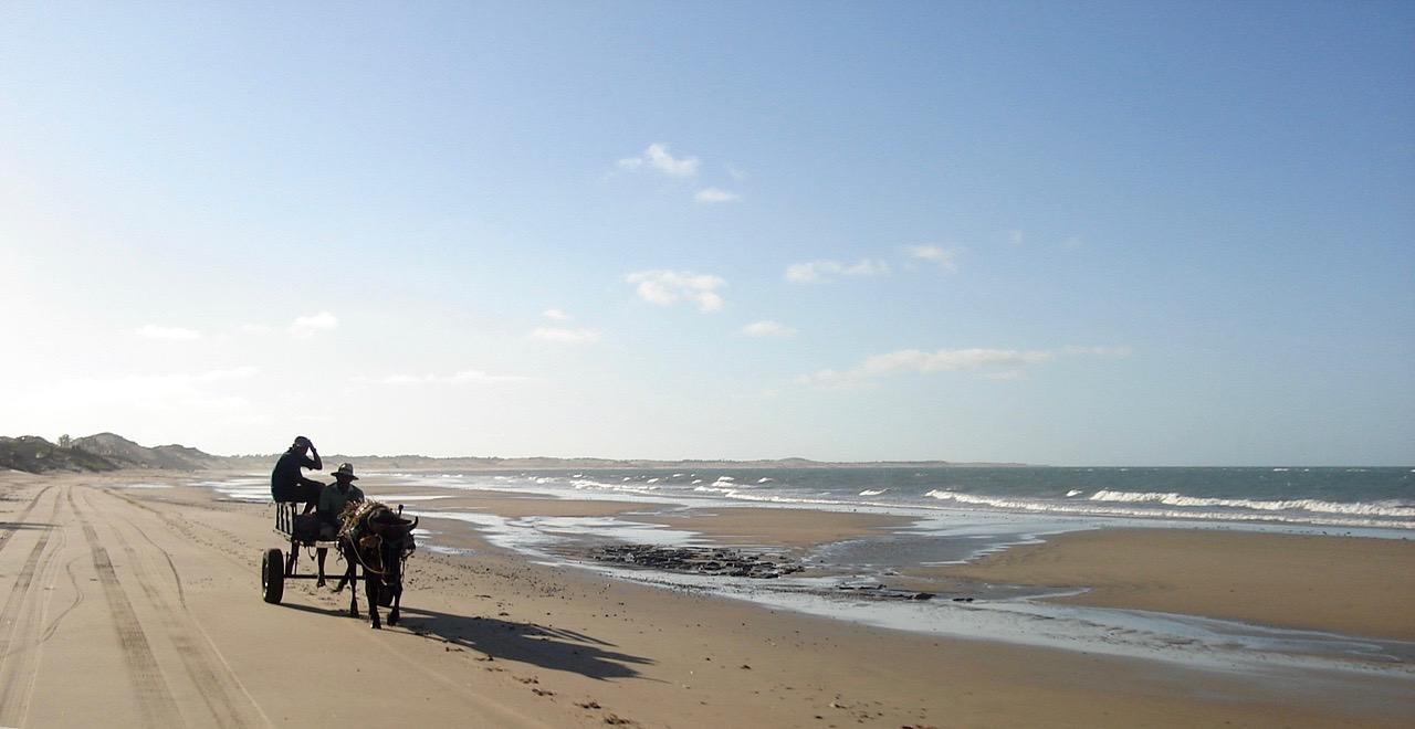 charette sur la plage nordeste