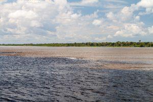 Croisière Amazone Rio Negro Rencontre des eaux