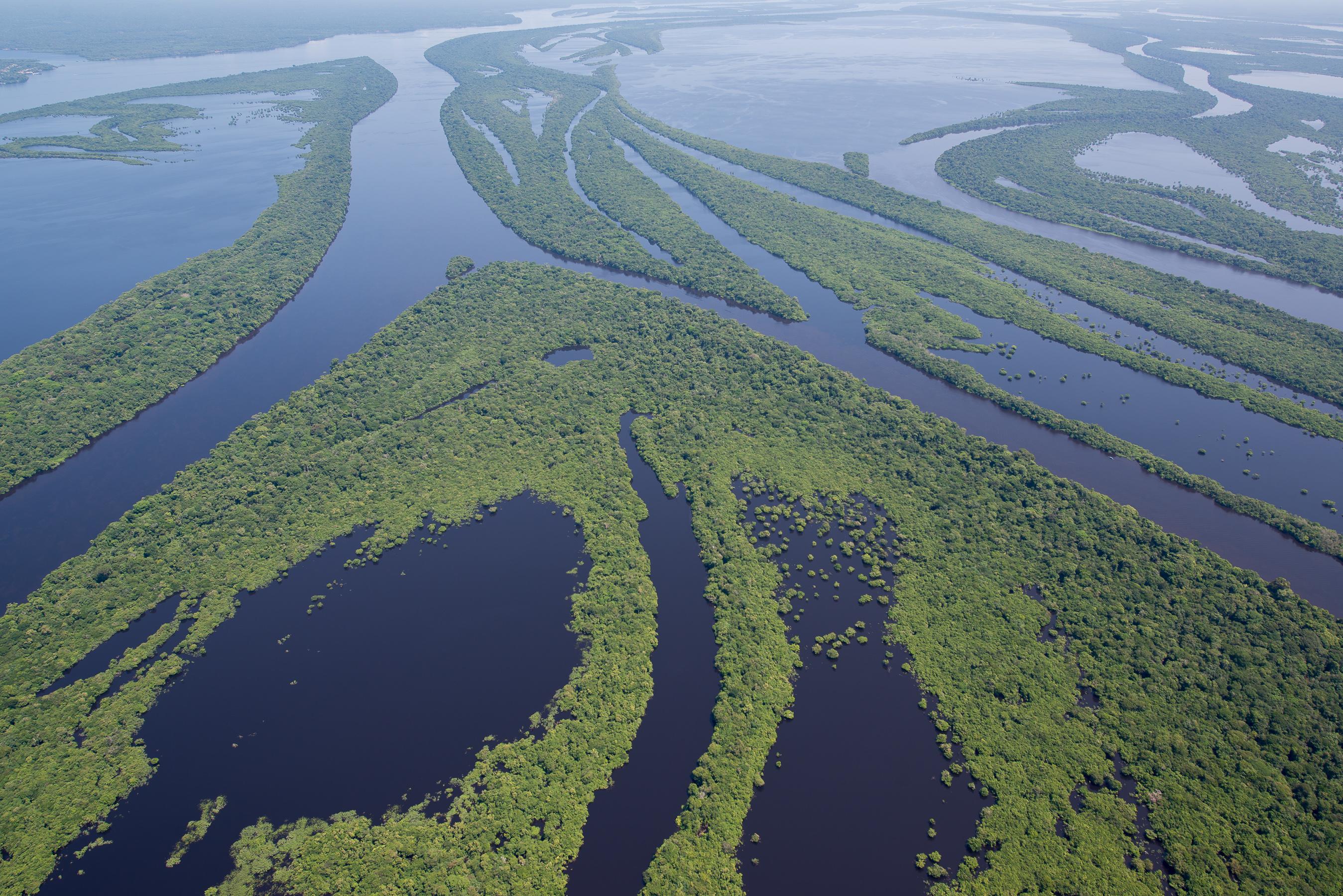Une Croisi 232 Re Priv 233 E En Amazonie Pour D 233 Couvrir Le Rio Negro