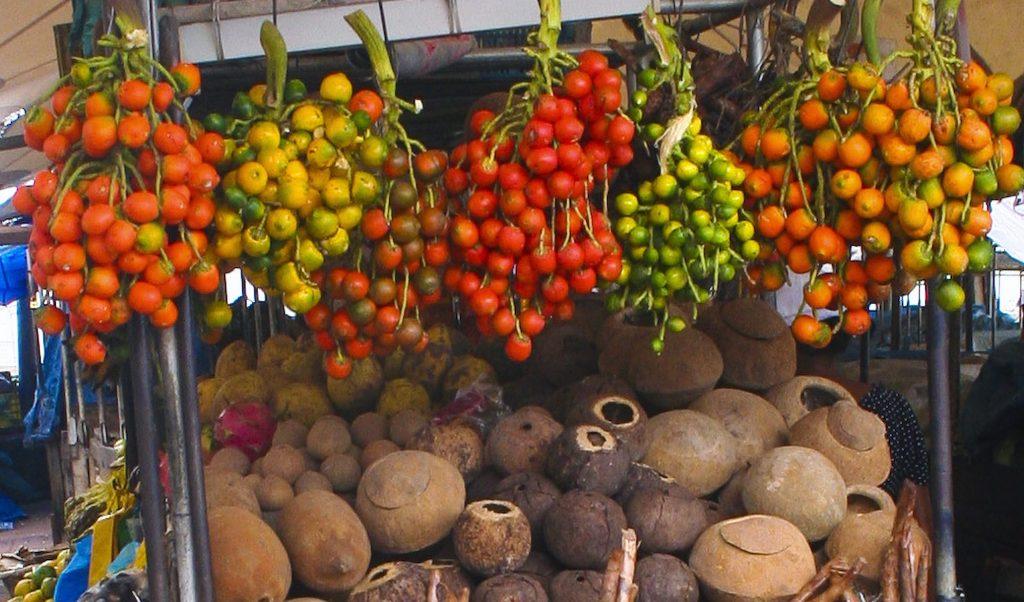 fruits Amazonie