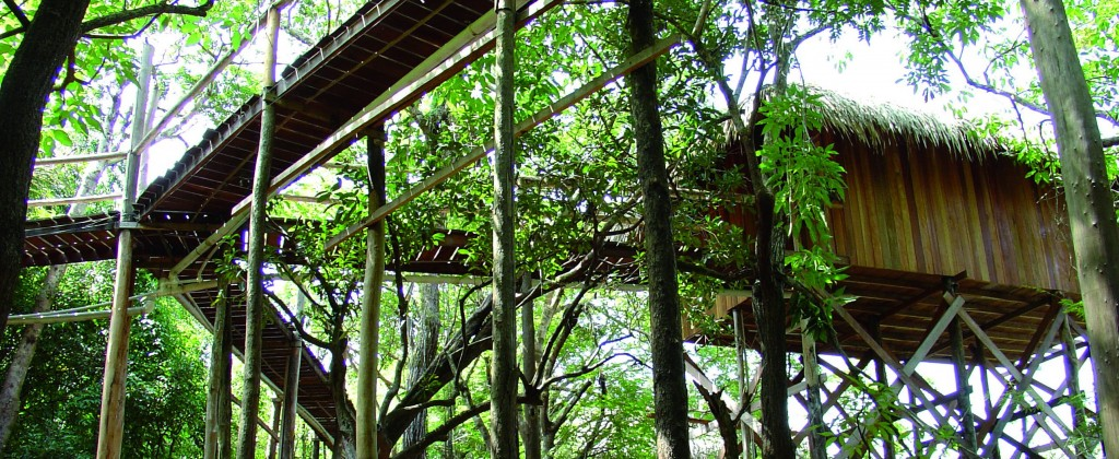 juma Lodge dans la végétation