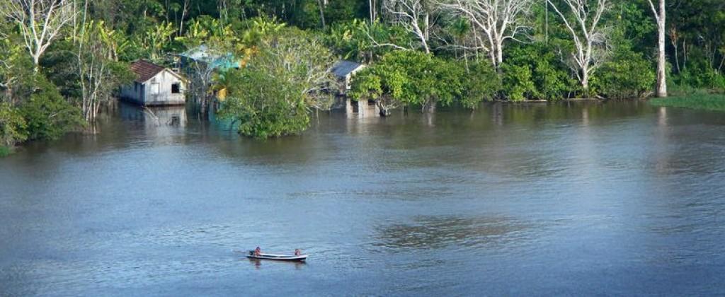 Lac Amazonie