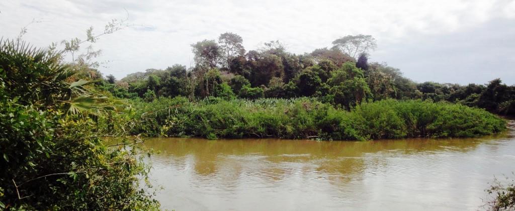 Pantanal Rivière 2