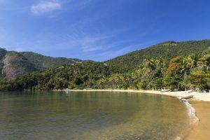 plage de rêve cocotiers et sable blanc