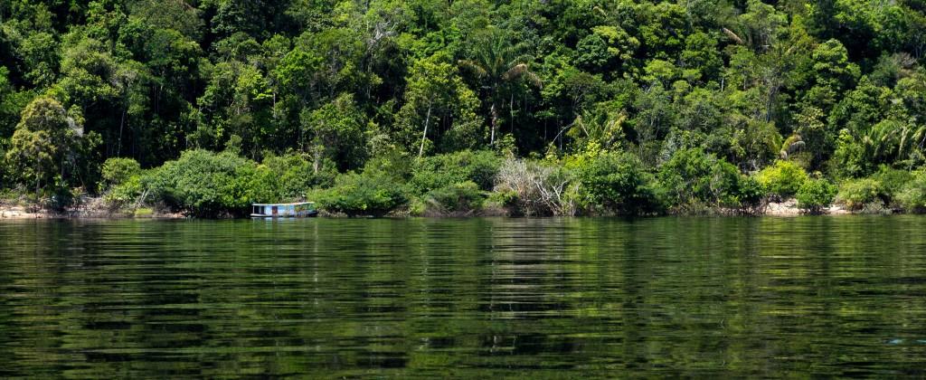 Rio Negro Amazonie