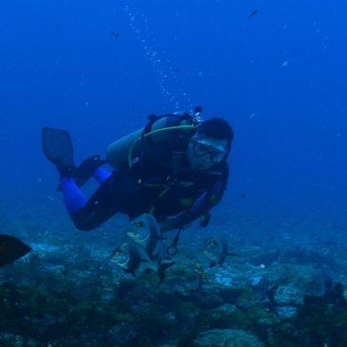 un plongeur Fernando de Noronha