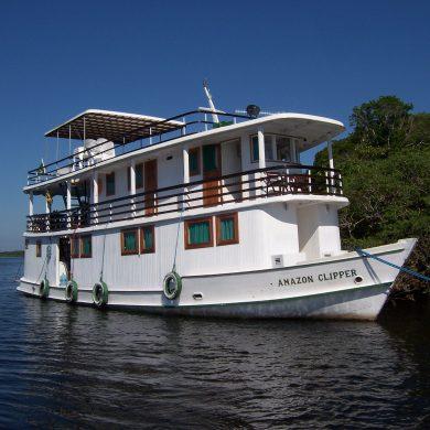 Amazonie Bateau amarré prés de la mangrove