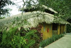 Amazonie Bungalow Amazon eco park