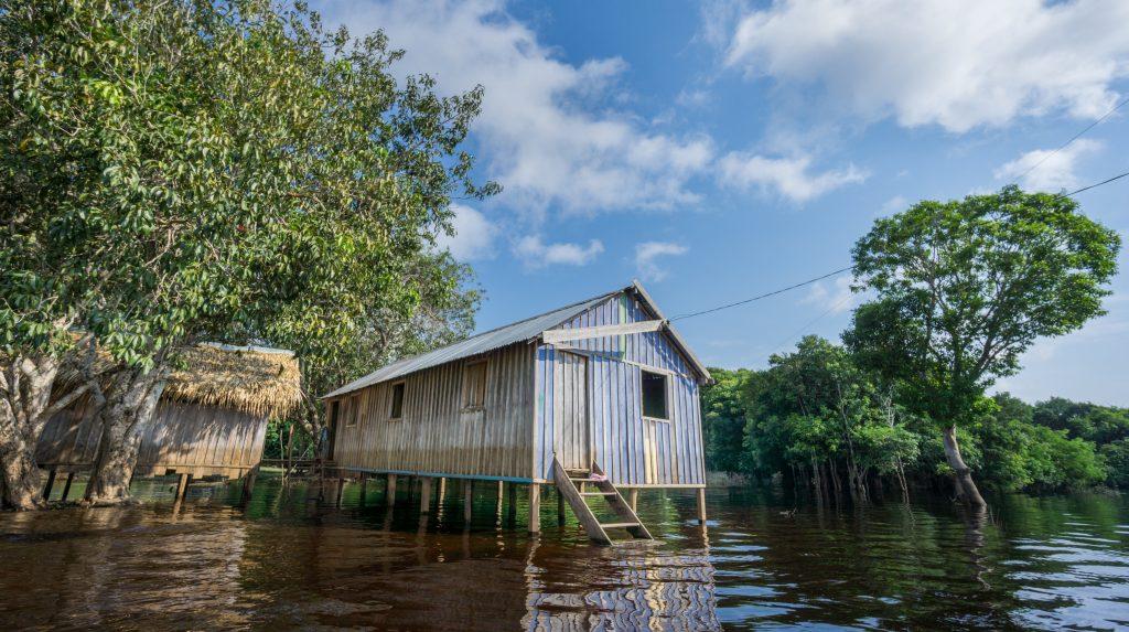 Amazonie Cabane de caboclo au bord de l'Igapo