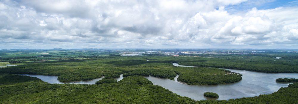 https://cdn.brazil-selection.com/wp-content/uploads/2016/06/amazonie-meandres-de-larchipel-des-anavilhanas-1000x350.jpg
