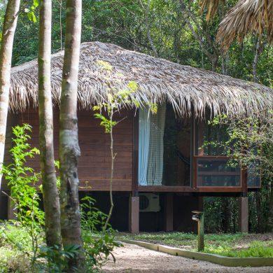 Amazonie vision de bungalow Anavilhanas