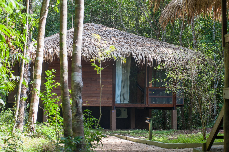En Incontournable Croisière Brésil Étape AmazonieUne Au CxrWoBQde