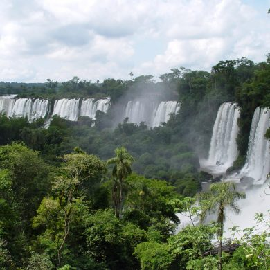 chutes d'Iguaçu au milieu de la jungle luxuriante