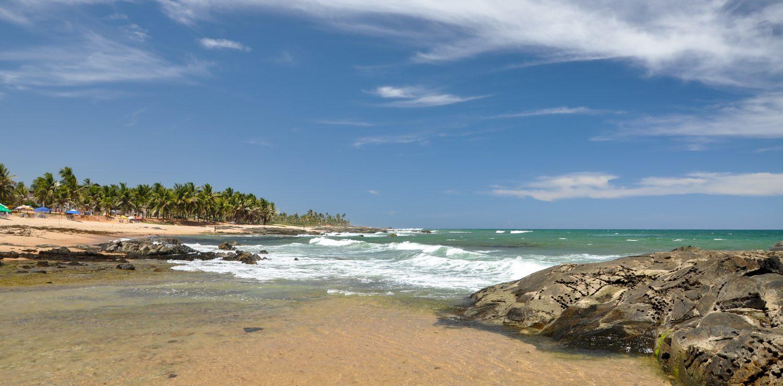 Praia do Forte Plage et cocotiers