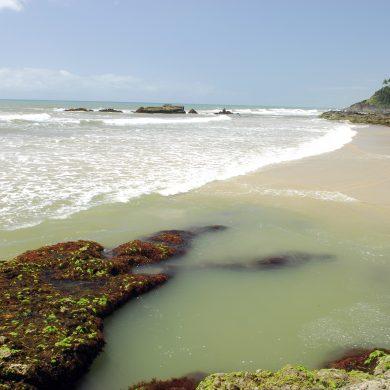 Txai Itacare activité surf