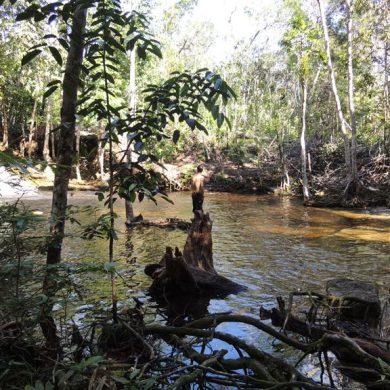 Amazonie pêche dans une rivière