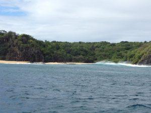 Fernando de Noronha plage et forêt